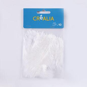 10 plumes de 8 cm - Blanc - Créalia