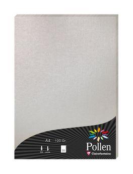 1 étui de 50 feuilles Pollen 210x297 mm 120g  - Argent